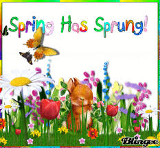 Image result for spring animated gif