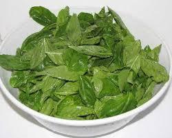 Fresh Basil To Dried Basil Conversion Chart How To Easily Make Pesto From Fresh Basil