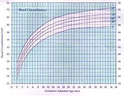 Height Chart Blank Printable Baby Book Growth Chart Blank Restaurant Bluedasher Co