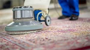 florida carpet cleaning businesses for