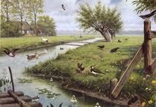 Afbeeldingsresultaat voor oude schoolplaten over de natuur