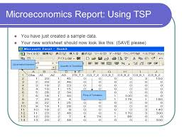 Microeconomics Report: Using the TSP a guide for students at the ...