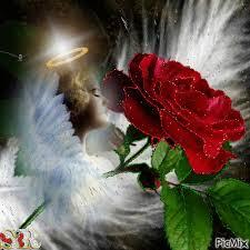 cosas muy bonitas y variadas encontradas en la web   Fotos animadas de amor, Rosas, Fotografías de amor
