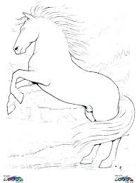 Clydesdale Horse Coloring Pages To Print Free Printable Cartoon