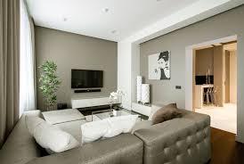 apartment living room design. Grey Tufted Sofa In Contemporary Apartment Living Room Idea Feat Model 34 Design I