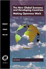 the new global economy and developing countries making openness  the new global economy and developing countries making openness work policy essay dani rodrik 9781565170278 com books