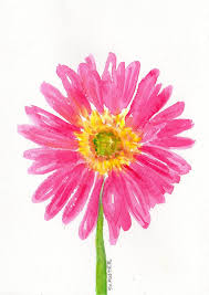 original watercolor pink painting gerbera daisy by sharonfosterart 18 00