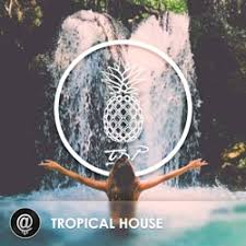 The Dancing Pineapple Presents Tropical House Playlist