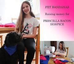Small Pet Bandana - Priscilla Bacon Hospice