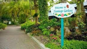 flamingo garden flamingo gardens fort tourism media flamingo gardens wedding expo flamingo garden