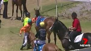 Charts And Maps Dead Horse Australian Jockey Caboche Suspended For Punching Horse Bbc