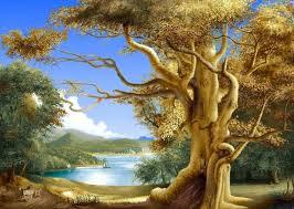 free beautiful nature wallpapers