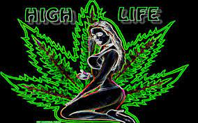 2560x1440 Weed Wallpaper posted by ...