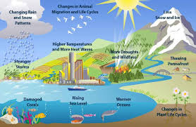 global climate change essay on global climate changes