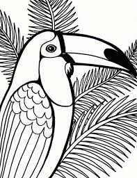 Small Picture Parrot on Coconut Tree Coloring Page Parrot on Coconut Tree