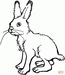bunny ears and chocolate coloring pages hellokids com. cute bunny ...