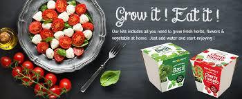 paris garden paris garden kitchen herbs flowers vegetable grow kits hong kong
