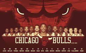 chicago bulls 2010 11 roster widescreen wallpaper