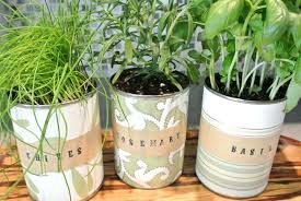 how to make an indoor herb garden. How To Make An Indoor Herb Garden Diy Mason Jars Hanging Ideas With Grow Light W