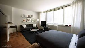 apartment furniture layout ideas. Wonderful Ideas Studio Apartment Furniture Layout Inspirationa Small Room  Decorating Ideas New Cool Tiny In M
