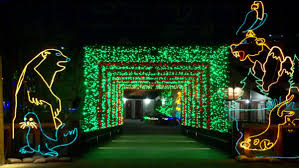 Boo Lights Hogle Zoo Discount Tickets Nows The Time To See Zoolights At Utahs Hogle Zoo