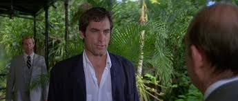 Image result for licence to kill key west