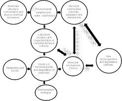 pesticide biodegradation mechanisms genetics and strategies to  representation of the relationships between pesticides microbial communities and the discovery of new biodegradation