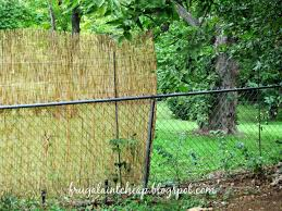 chain link fence bamboo slats. Incredible Bamboo Privacy Screen For Chain Link Fence Backyard Landscaping Pict Concept And Styles Slats
