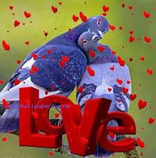 valentines day mobile version