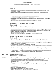Technical Consultant Senior Resume Samples Velvet Jobs