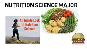 The Nutrition Major Careers Courses And Concentrations Youtube