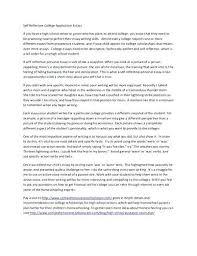 Application Essay Examples Application Essays Examples College Application Essay Example