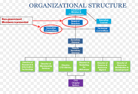 Corporate Organizational Chart With Board Of Directors Organization Text