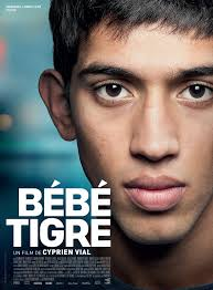 Image result for bebe tigre film