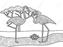 大人のベクトル図のフラミンゴ鳥の塗り絵大人のための着色抗ストレス 黒と白のラインレース パターン