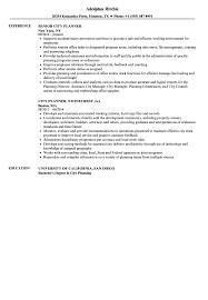 City Planner Resume Samples Velvet Jobs