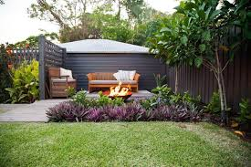 Small Picture Tropical Plants For Privacy Hedge Home Design Ideas Photos