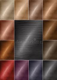 Color Chart For Tints Hair Color Palette With A Wide Range