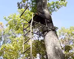 First Look Field Stream Shop Outpost Xl Ladder Stand