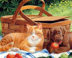 Summer Cats And Dogs - 1280x1024 Wallpaper - teahub.io