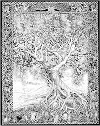Small Picture Images About SUPER COLORING PAGES On Pinterest Coloring Tree