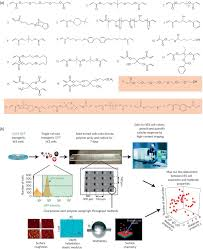 High Throughput Screening Of Biomaterials For Hes Cell Clonal