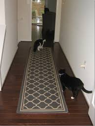 modern unique cb2 rugs rugs ikea carpet