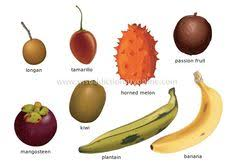 tropical fruit names. Wonderful Fruit Food And Kitchen U003e Fruits Tropical Image  Visual Dictionary For Tropical Fruit Names S