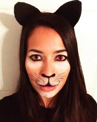 fun kitty cat makeup