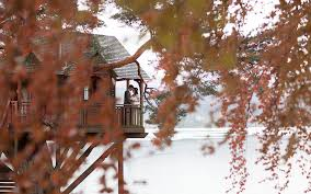 Win A Wonderful Treehouse Wedding  The Lodge On Loch GoilTreehouse Scotland