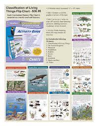 Flip Chart Set Classification Of Living Things