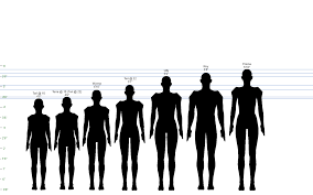 Height Chart With People A Useful Height Chart For Character Reference Size Movie