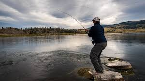 Trout Spey Line Selection
