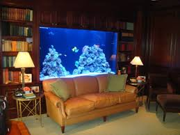 office aquariums. this will be in my home officelibrary someday office aquariums